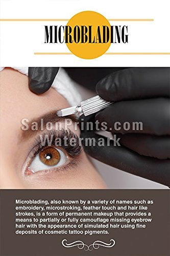 Global Printing Services Nail Salon Poster - Permanent Makeup Microblading Poster || P-255 (18in x 27in)