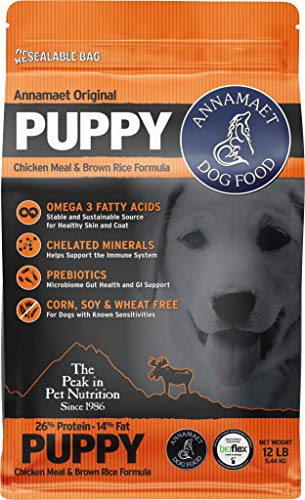 Was There a Recall on Blue Buffalo Dog Food?