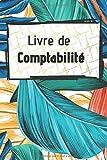 Livre de comptabilité: Cahier idéal pour organiser vos finances avec des pages adaptées | Carnet de compte et comptabilité | Finance personnel | Economie