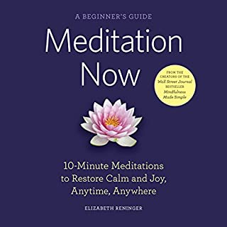 Meditation Now: A Beginner's Guide cover art
