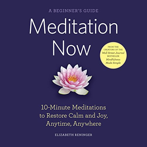 Meditation Now: A Beginner's Guide audiobook cover art
