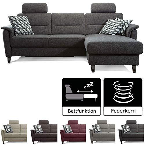 Cavadore Schlafsofa Palera mit Federkern / L-Form Sofa mit Bettfunktion / 244 x 89 x 164 / Stoff Dunkelgrau