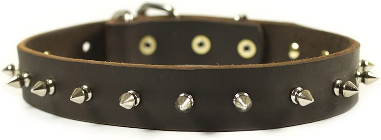 Dean and Tyler  SPIKED PUNCH  Dog Collar  Nickel Hardware  Brown  Size 76cm x 3cm Width. Fits neck size 28 Inches to 32 Inches.
