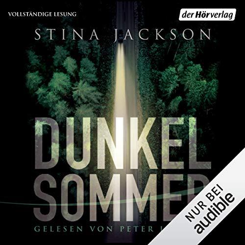 Dunkelsommer audiobook cover art