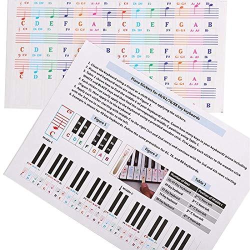 Pegatinas de Piano Transparentes de Dibujos Animados para 25/49/61/76/88 Teclado removible Niños Alfabeto Piano Spectrum Teclado Pegatina Juguete