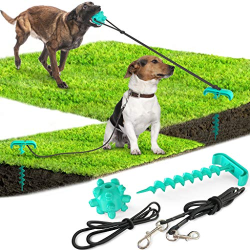 Outdoor Dog Leash Pile and Nail Dog Stake Tie Out Cable with Elastic Pull Rope Molar Ball and Portable Tie-Out Stick Playing and Backyard In Ground Camping Outdoor Yard Dogs Up to 115 Pounds (Blue)