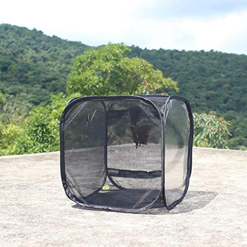 PowerBH Tragbarer Insektennetz-Schmetterlings-Insektenbarsch-Beobachtungskäfig Sämling Lichtübertragungs-Inkubator Faltbarer Insektenkäfig