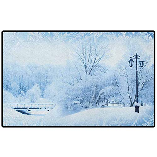 Winter Outdoor Rugs 72x48 Winter Trees in Wonderland Theme Christmas New Year Scenery Freezing ICY Weather Floor Mats Doormat Rugs for Home