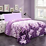 Plush Blanket Queen Size (90' x 90'), JML 300GSM Super Soft Warm Printed Flannel Fleece Blanket for Couch and Sofa, Purple Floral