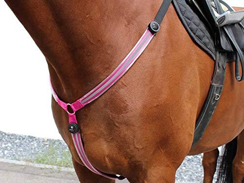Animal Light Leucht-Vorgeschirr 2.0 (Pink, COB/Pony)