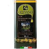 Olio Extravergine d'Oliva 100% Italiano | Frantoio Fierro | Tracciabilità UNASCO Lotto di Produzione | Confezione in Latta Salva spazio 5 Litri | Estratto a Freddo | Idea Regalo