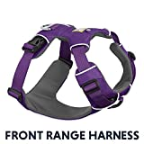 RUFFWEAR - Front Range Dog Harness, Reflective and Padded Harness for Training and Everyday, Tillandsia Purple (2017), Small