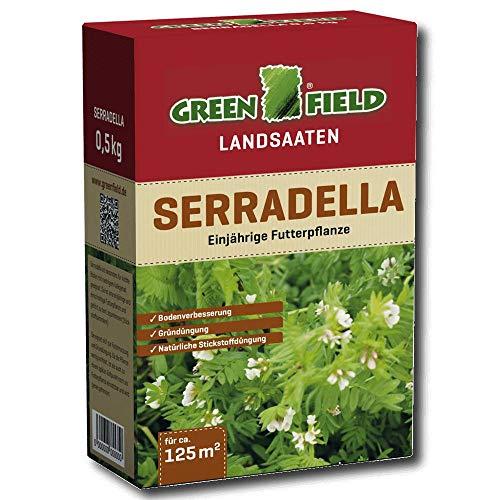 Greenfield 63785 Serradella Gründünger 500 G pour Env. 125 Qm