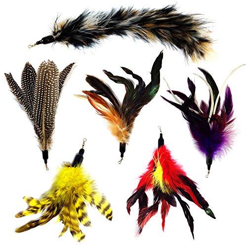 Juego de 6 plumas para gatos de Pet Fit For Life