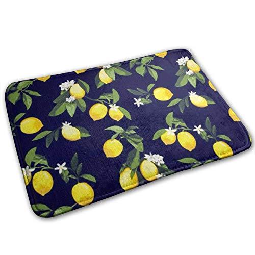 hgdfhfgd Alfombrillas de limón Alfombra Suave de 40x60 cm para Cocina, Sala de Estar, Comedor, dormitorio-M47