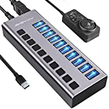 Powered USB Hub - ACASIS 10 Ports 48W USB 3.0 Data Hub - with Individual On/Off Switches and 12V/4A Power Adapter USB Hub 3.0 Splitter for Laptop, PC, Computer, Mobile HDD, Flash Drive and More
