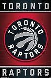 Toronto Raptors - Logo 15 Poster (55,88 x 86,36 cm)