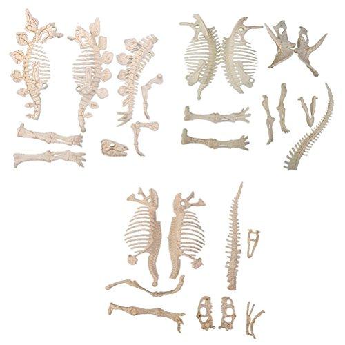 ROSENICE Figures de 3pcs Puzzle Toy modèle Assorties Dinosaure Jouet Squelette fossiles squelettes Jouets Bricolage
