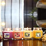 Best Scented Candles - Scented Candles Set of 4 Jars in Breathtaking Review
