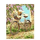 Pintura por Números bicicleta DIY para Adultos Niños Pintura al óleo Kit con Pinceles y Pinturas Lienzo Regalo de Pintura Decoraciones para el Hogar(40 x 50 cm Sin Marco)