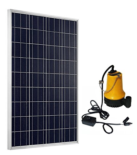 ECO-WORTHY 100 Watts Poly PV Solar Panel & Solar Water Pump for Pond Watering Washing Car