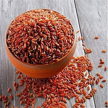 1000 Stück rote Reissamen zum Einpflanzen, nussiges Aroma, höherer Nährwert