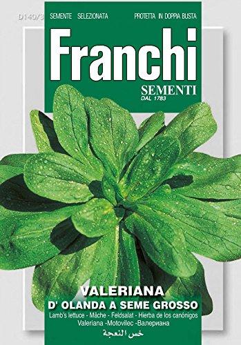 Franchi Sementi DBO140-3 Feldsalat D'Olanda A Seme Grosso (Salatsamen)