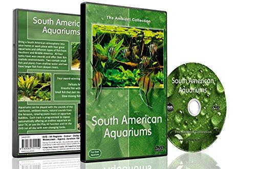 Aquarium DVD - Südamerikanische Aquarien mit Musik und natürlichen Klängen - in HD gefilmt