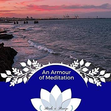 An Armour Of Meditation