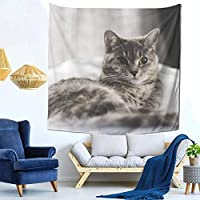 Lying Cat Tapestry, Multi-functiol Wall Hanging, Stylish, Home Decor, Modern Art, Wall Mural Decor, Room Living Room, Entryway, Bathroom, Shop, Decoration, 59x59inch/150x150cm
