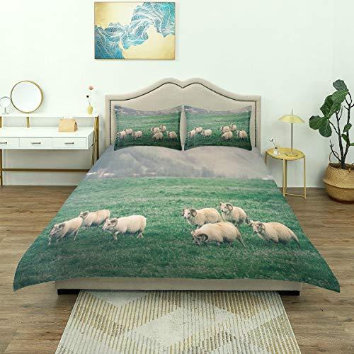 DYCBNESS Juego de Funda nórdica,Foto temática de cría con ovejas pa