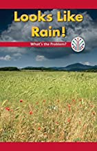 Looks Like Rain!: What's the Problem? (Computer Science for the Real World)
