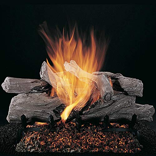Best Review Of Rasmussen 20-Inch Evening Campfire Gas Log Set with Vented Propane LC Multi-Burner wi...