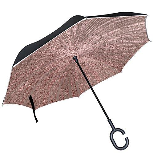 Alaza Regenschirm, wendbar, doppelschichtig, winddicht