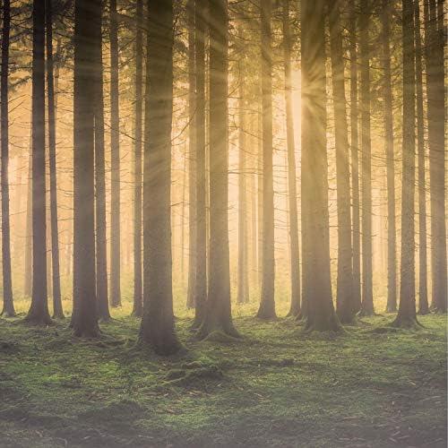 Naturaleza Relajacion, Sonidos de la Naturaleza para Dormir & Unidad de música zen relajante