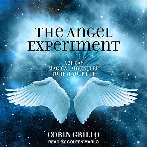 The Angel Experiment audiobook cover art