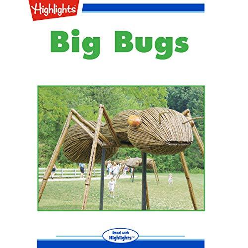 Big Bugs copertina