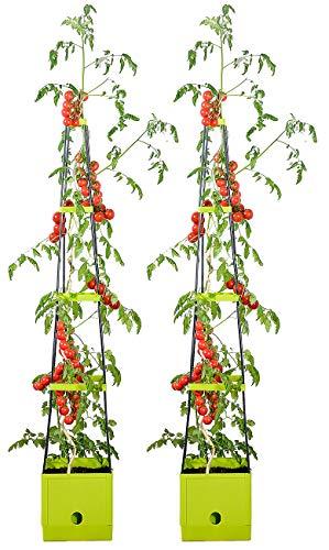 Royal Gardineer Pflanzturm: 2er-Set Pflanz-Türme mit Rankhilfe für Tomaten, mit 2,5-l-Wassertank (Pflanztopf)