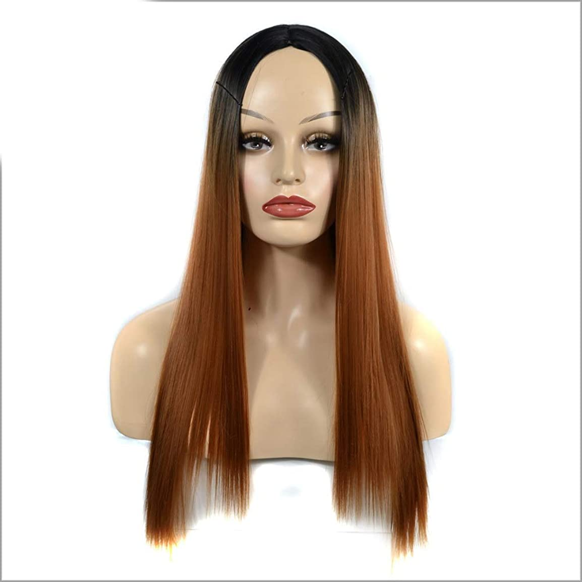 解釈する勉強する不規則性HOHYLLYA ダークブラウンオンブルロングストレートウィッグ女性用中部かつらダークルーツ耐熱ウィッグパーティーウィッグ (色 : Dark brown, サイズ : 60cm)
