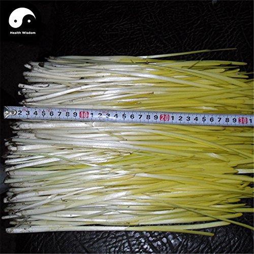 Acheter Buds Poireau Graines de Légumes épices végétales persil ail Ciboulette