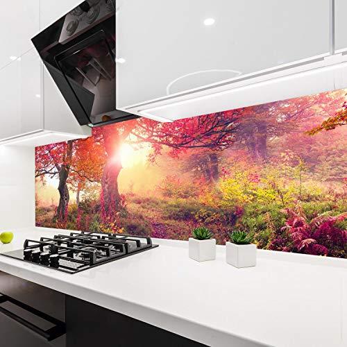 wandmotiv24 Küchenrückwand Wald Bäume Natur Sonne Rot 160 x 60cm (B x H) - Acrylglas 4mm Nischenrückwand, Spritzschutz, Fliesenspiegel-Ersatz, Deko Küche M1113