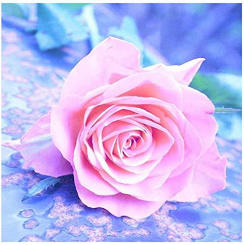 DIY 5D Kits de Pintura de Diamantes Taladro Completo Cristal Redondo Diamantes de imitacin Imagen Artesana para el hogar Decoracin de Pared Regalo,Disfraz de flor rosa rosa,40x50 cm