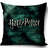 Harry Potter - Funda de cojín (40 x 40 cm), poliéster, Verde, 40 x 40 cm