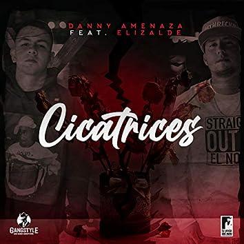 Cicatrices (feat. El Elizalde)