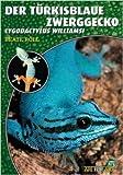 Der Türkisblaue Zwerggecko: Lygodactylus williamsi (Art für Art) (...
