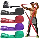 PACEARTH Long Resistance Band Set, Pull Up Assistance Bands, Full Body Workout Band Resistance for Man & Women, Resistance Band for Training, Home Workouts, 4 Pack
