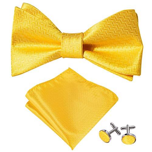 XIARUI Tie - Pajaritas para hombre, diseño de mariposa, color rojo y seda, para hombre, diseño de cachemira, color rojo