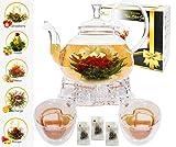 ECO NAVA Five Star Gift Blooming Tea Set (Teapot, warmer, 2 cups,5 balls)