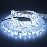 LEDENET 16.4FT Double Row SMD 5050 RGBW Color Changing Flexible LED Strip DC 24V 5M 600LEDs Waterproof IP65 Silcone Coating (RGB CW)