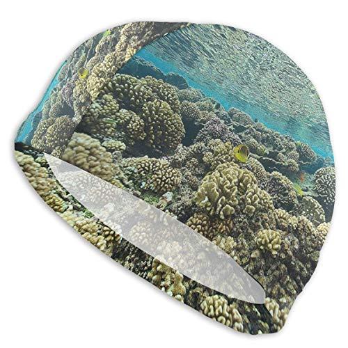 NoneBrand Pristine Reef Gorro de natación de licra de alta elasticidad, antideslizante, para adultos, unisex, para cabello largo y corto